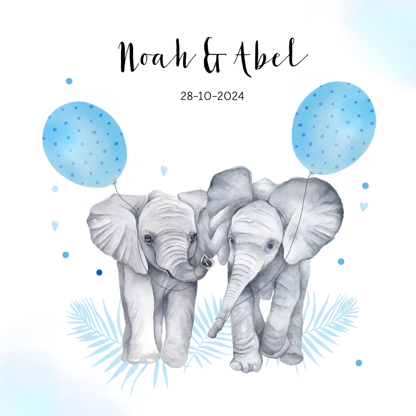 Geboortekaartjes - Geboorte jongetjes olifantjes