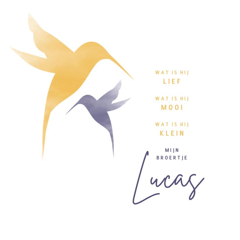 Geboortekaartjes - Geboorte silhouet waterverf kolibrie broertje