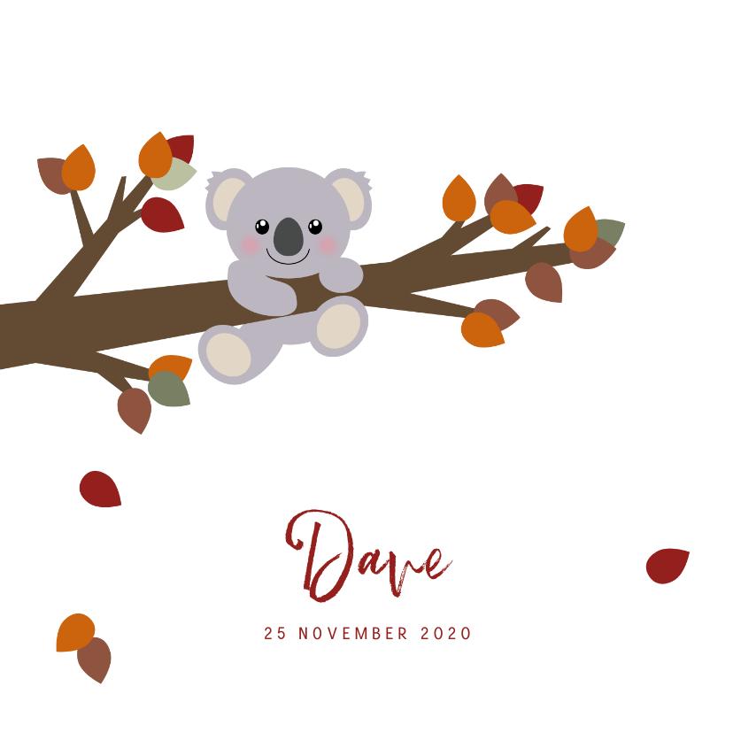 Geboortekaartjes - Geboortekaart herfst lief koalabeertje