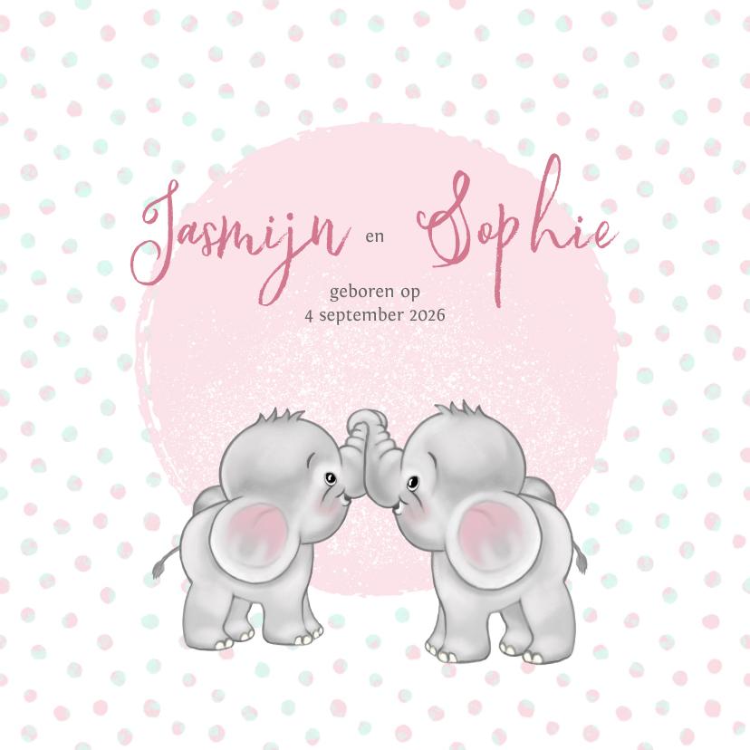 Geboortekaartjes - Geboortekaart meisje-tweeling olifantjes