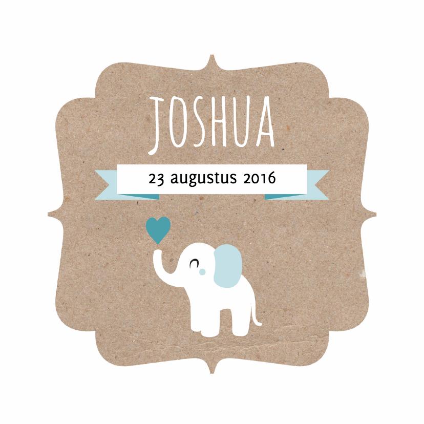 Geboortekaartjes - Geboortekaart olifant kraft