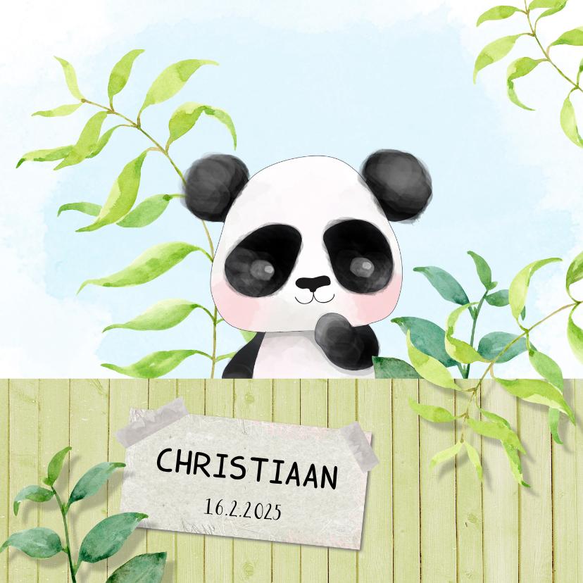 Geboortekaartjes - Geboortekaart Panda - jongen