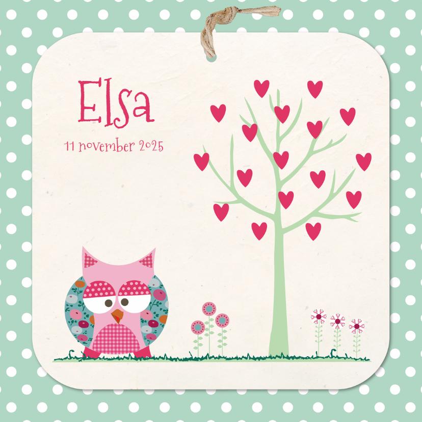 Geboortekaartjes - Geboortekaart uiltje Elsa