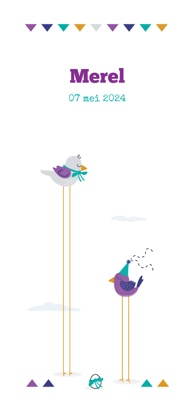 Geboortekaartjes - Geboortekaart vogels met een kuikentje