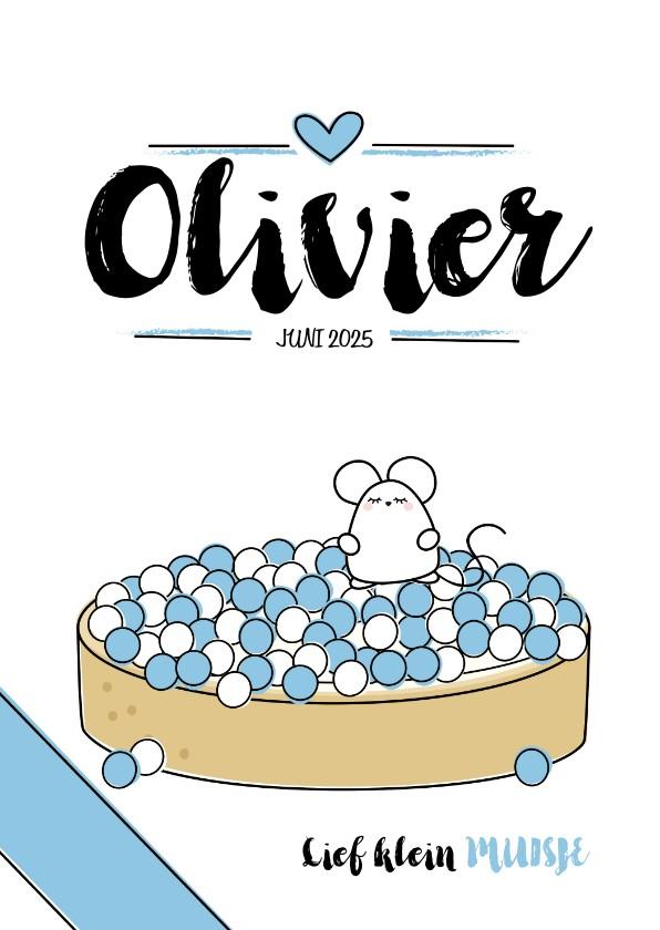 Geboortekaartjes - Geboortekaartje beschuit met muisjes blue