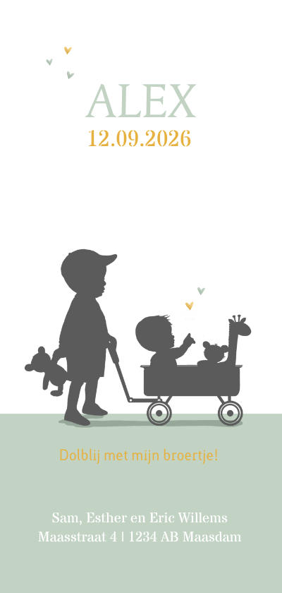 Geboortekaartjes - Geboortekaartje broertje kar av