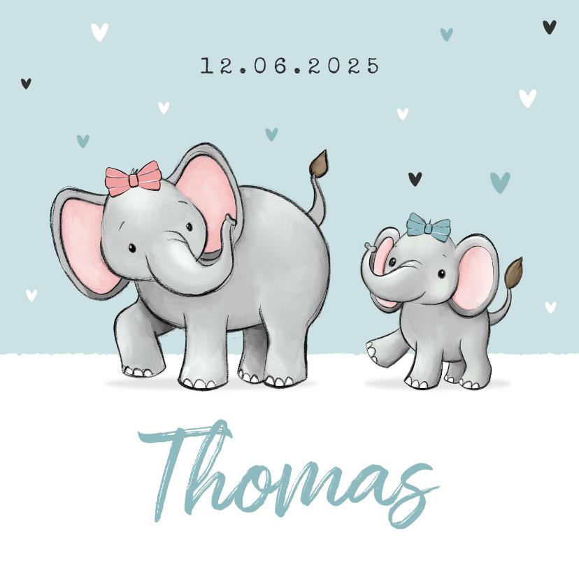 Geboortekaartjes - Geboortekaartje broertje zus olifantjes hartjes strikjes