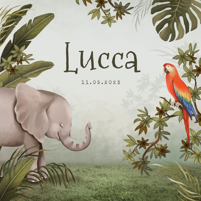 Geboortekaartjes - Geboortekaartje dieren jungle olifant papegaai