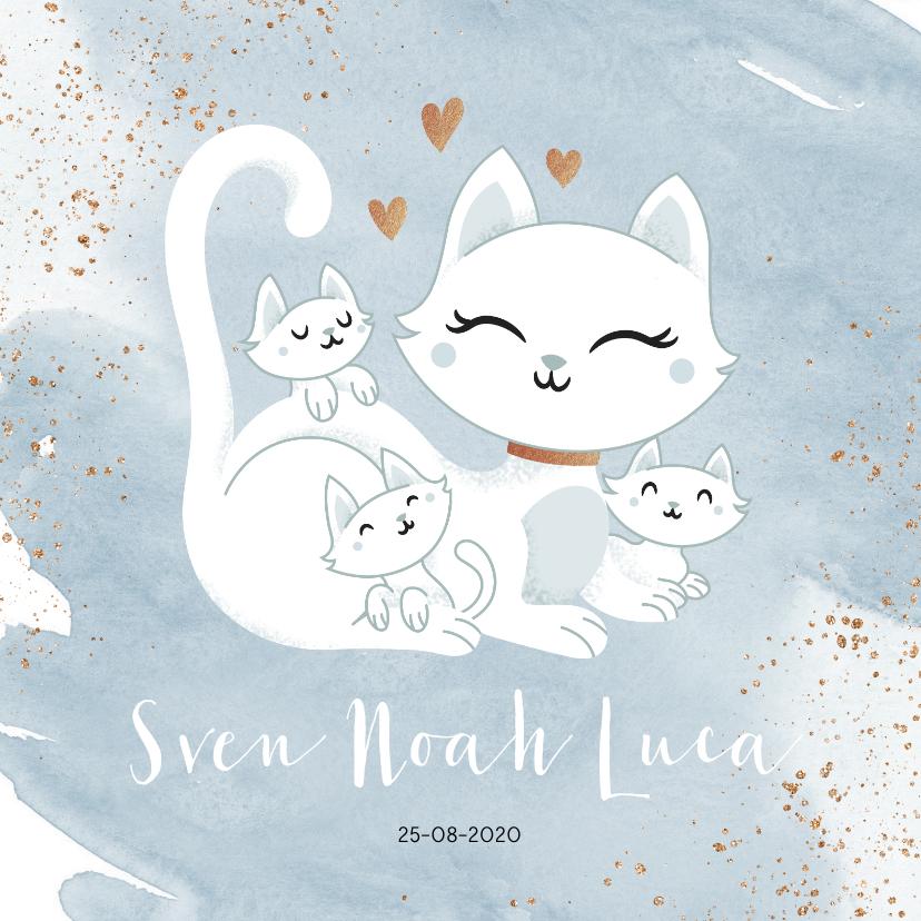 Geboortekaartjes - Geboortekaartje drieling meerling jongens poes met kittens