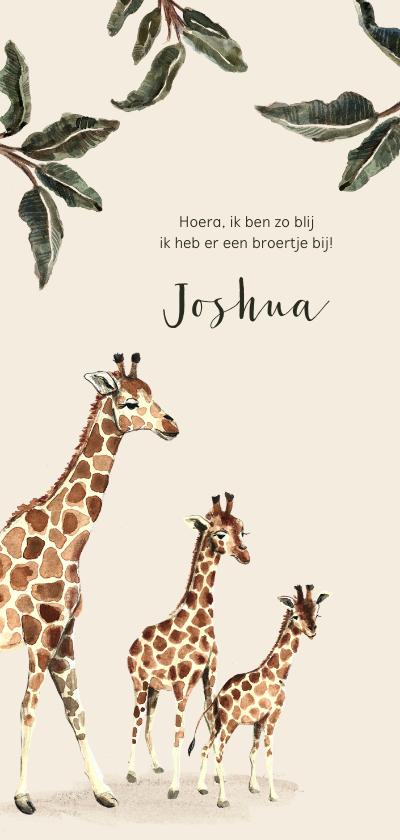 Geboortekaartjes - Geboortekaartje giraffen voor een tweede kindje
