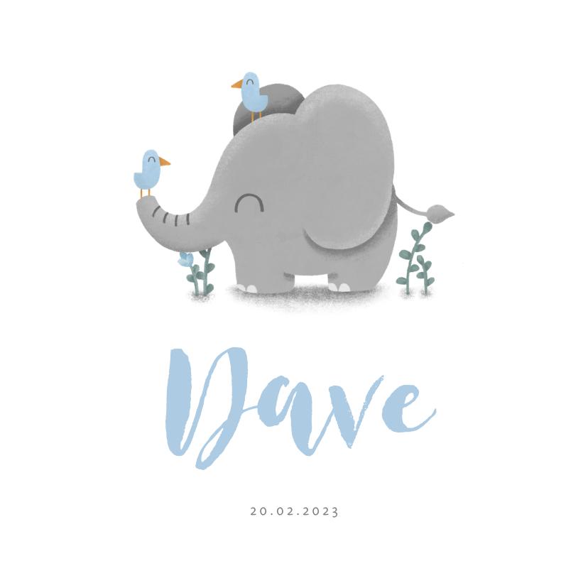 Geboortekaartjes - Geboortekaartje jongen met lieve olifant en vogeltjes