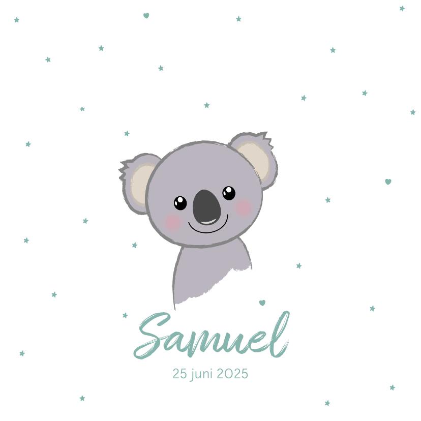 Geboortekaartjes - Geboortekaartje jongen met sterren en lief koalabeertje