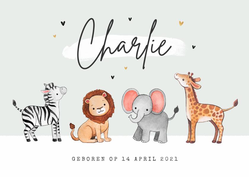 Geboortekaartjes - Geboortekaartje jungle dieren olifant zebra giraf leeuw