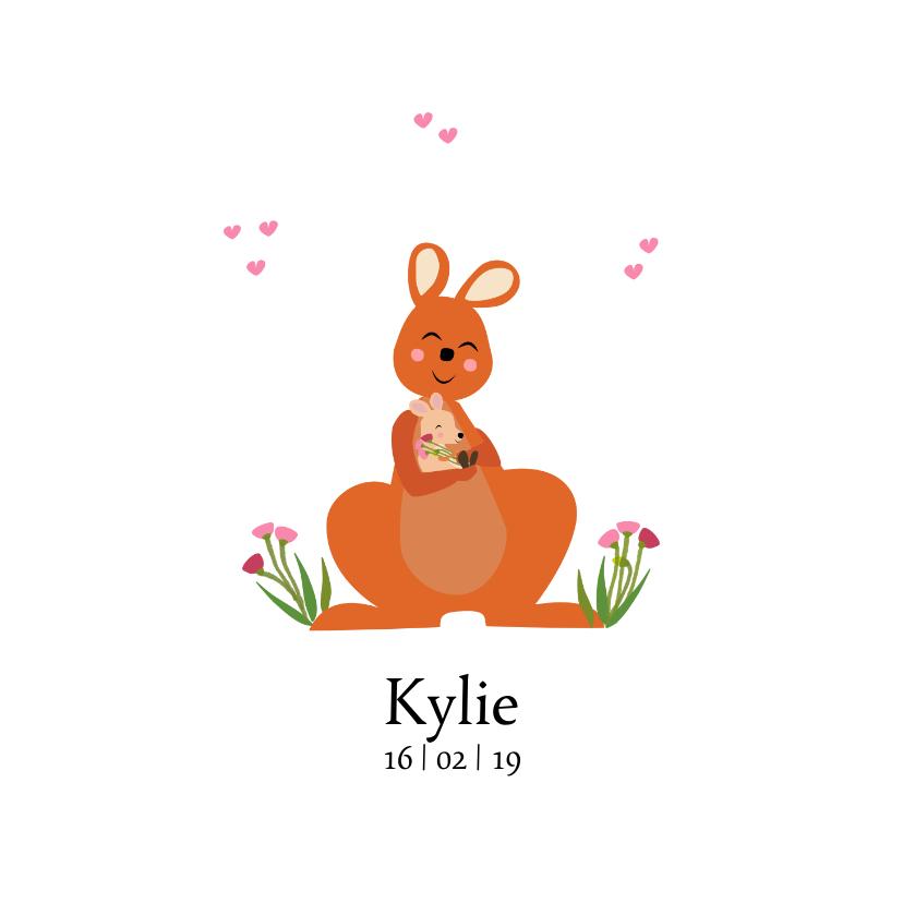 Geboortekaartjes - Geboortekaartje Kangaroo