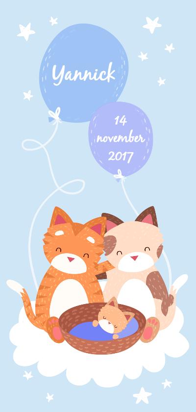 Geboortekaartjes - Geboortekaartje Knuffelkatten jongen