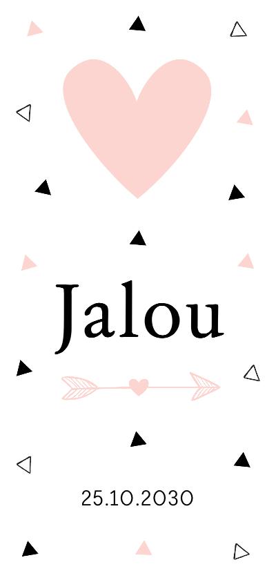 Geboortekaartjes - Geboortekaartje langwerpig meisje driehoekjes hartje