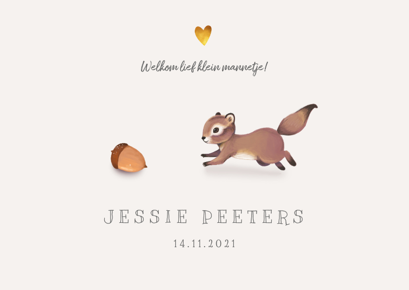 Geboortekaartjes - Geboortekaartje lief met eekhoorn voor jongen/meisje