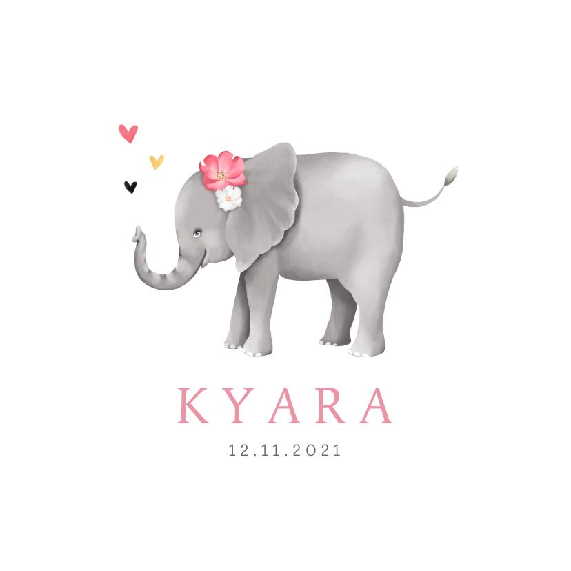Geboortekaartjes - Geboortekaartje lief met geïllustreerd olifantje