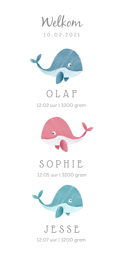 Geboortekaartjes - Geboortekaartje meerling met schattige walvisjes