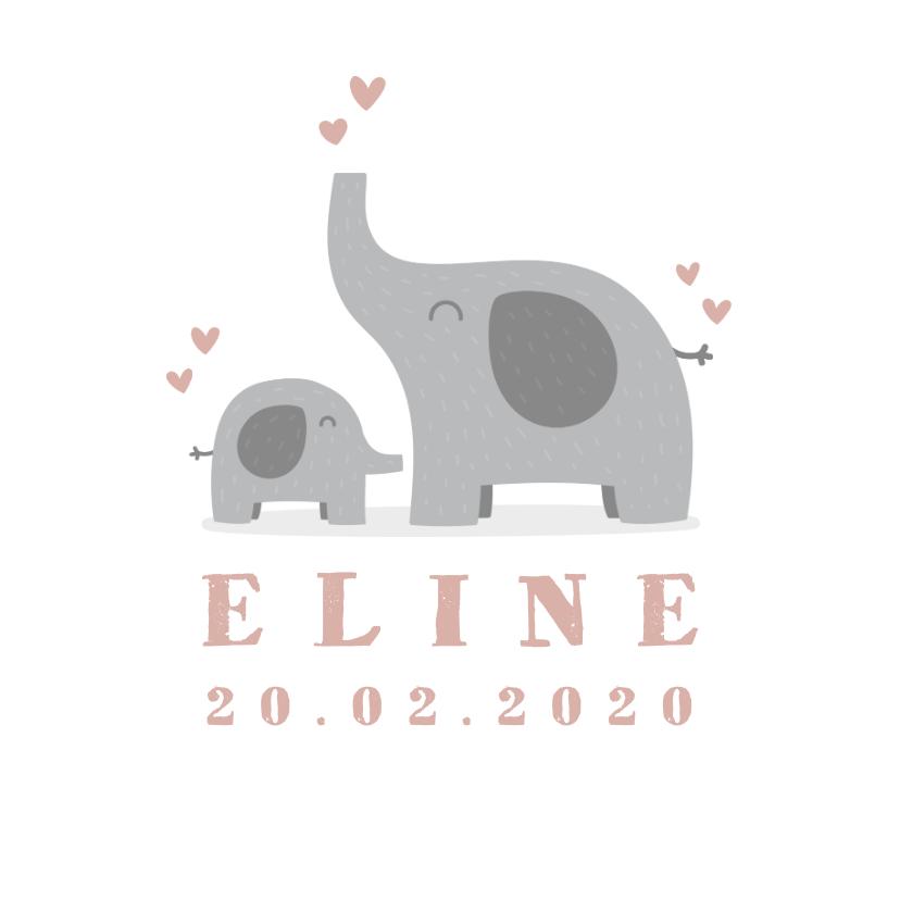 Geboortekaartjes - Geboortekaartje meisje met hartjes en olifantjes