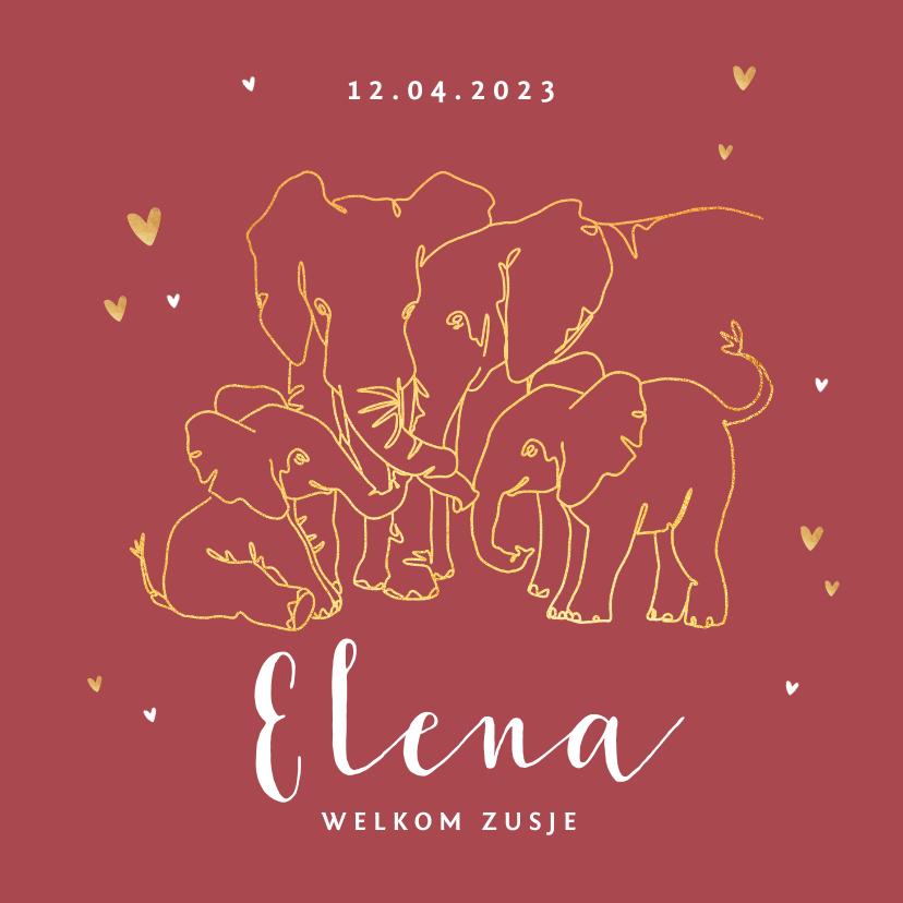 Geboortekaartjes - Geboortekaartje meisje olifant dieren zusje broertje goud