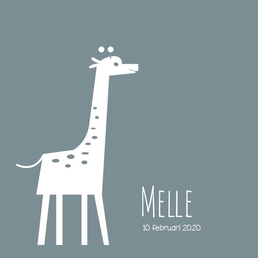 Geboortekaartjes - Geboortekaartje_Melle_SK