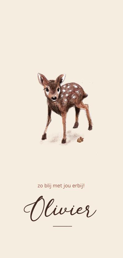 Geboortekaartjes - Geboortekaartje met een illustratie van een lief hertje
