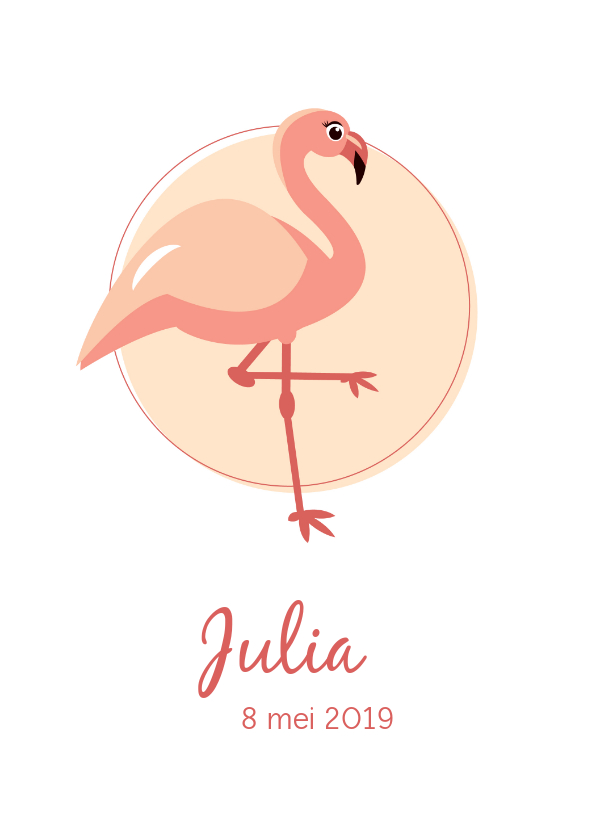 Geboortekaartjes - Geboortekaartje met elegante lieve flamingo