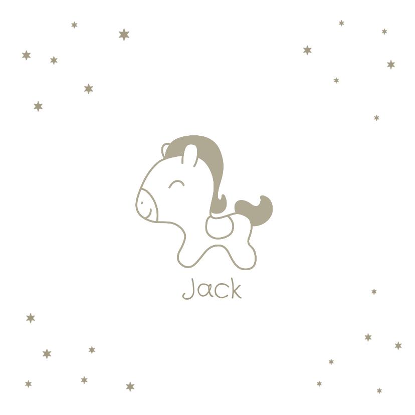 Geboortekaartjes - Geboortekaartje met lief hip paardje