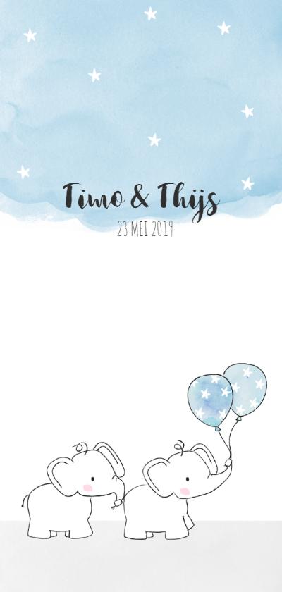 Geboortekaartjes - Geboortekaartje met tweeling olifantjes en ballonnen