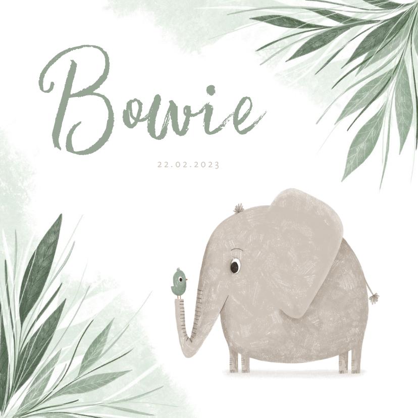 Geboortekaartjes - Geboortekaartje olifant met vogel en groene jungle blaadjes