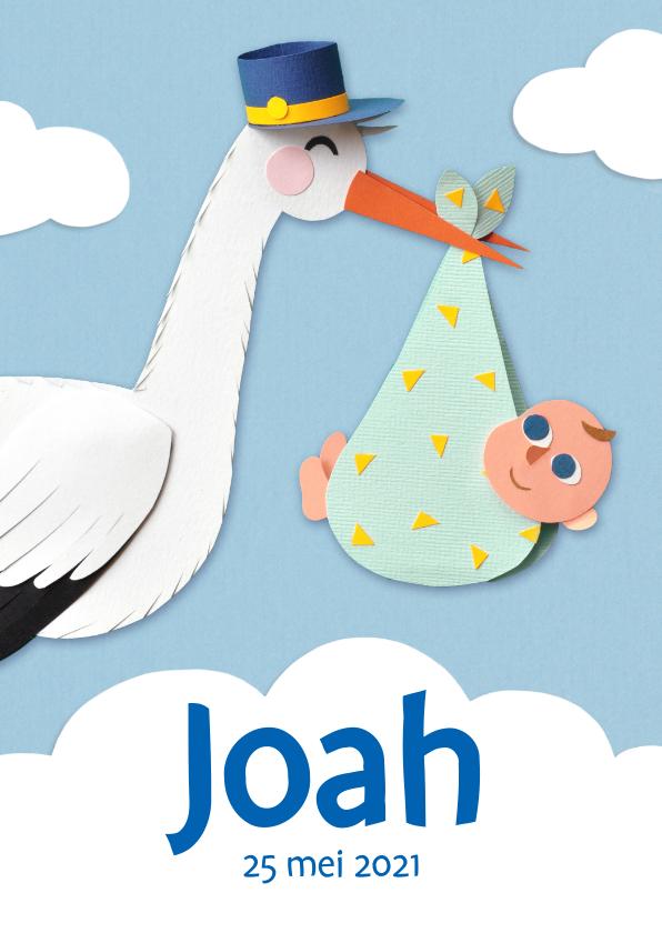 Geboortekaartjes - Geboortekaartje ooievaar met jongen