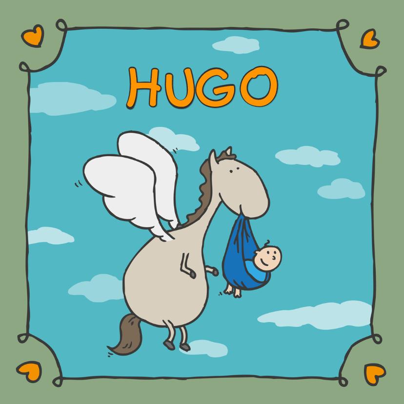 Geboortekaartjes - Geboortekaartje Pegasus