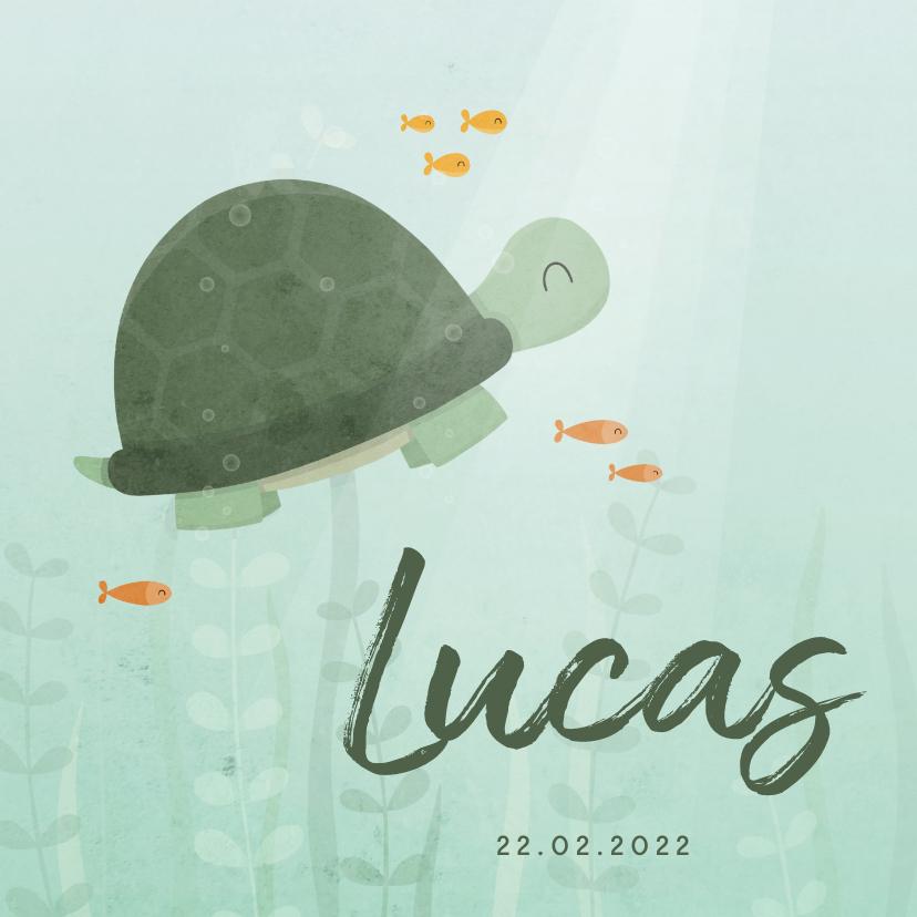 Geboortekaartjes - Geboortekaartje schildpad onderwater met visjes