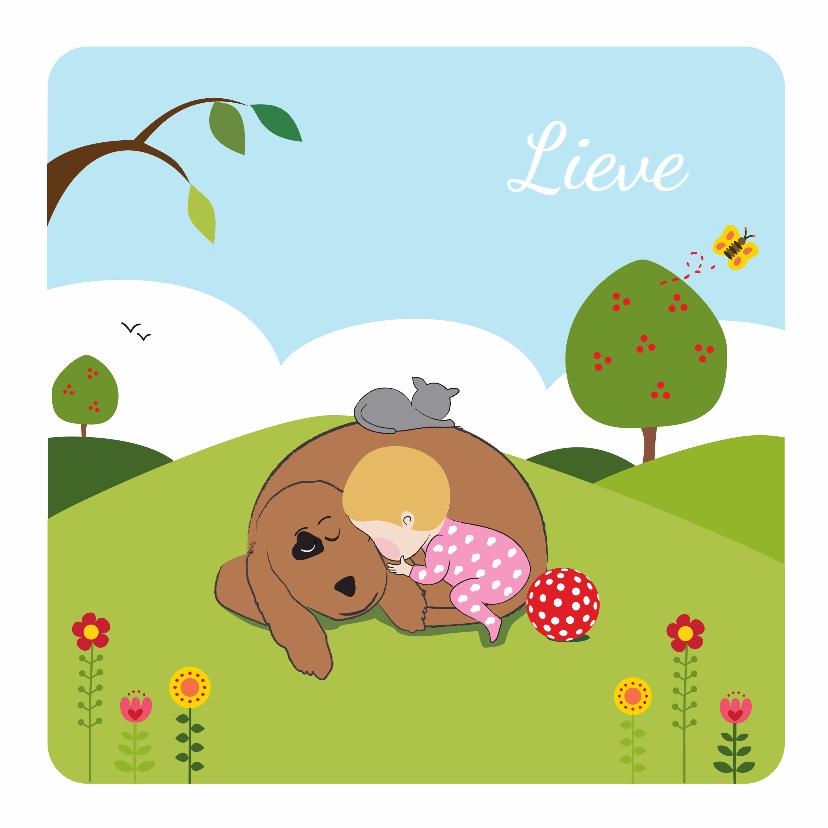 Geboortekaartjes - Geboortekaartje slapend meisje met vriendjes