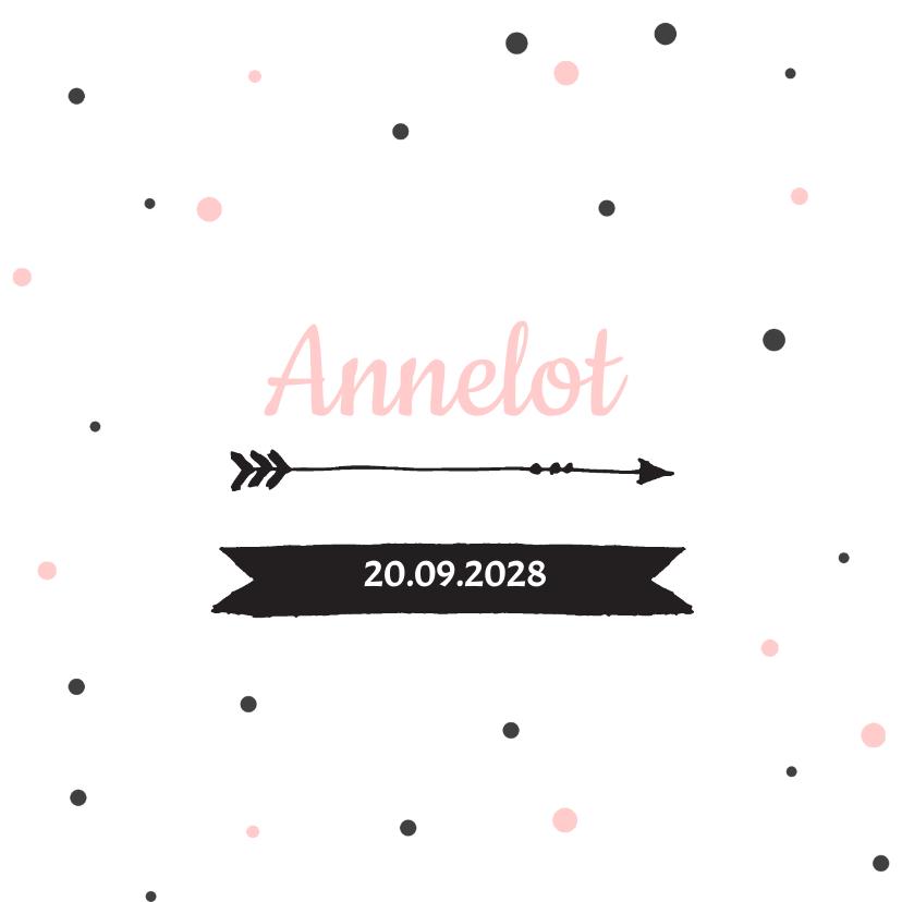 Geboortekaartjes - Geboortekaartje stippen Annelot