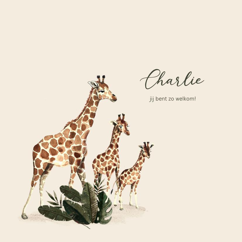 Geboortekaartjes - Geboortekaartje tweede kindje met getekende giraffen