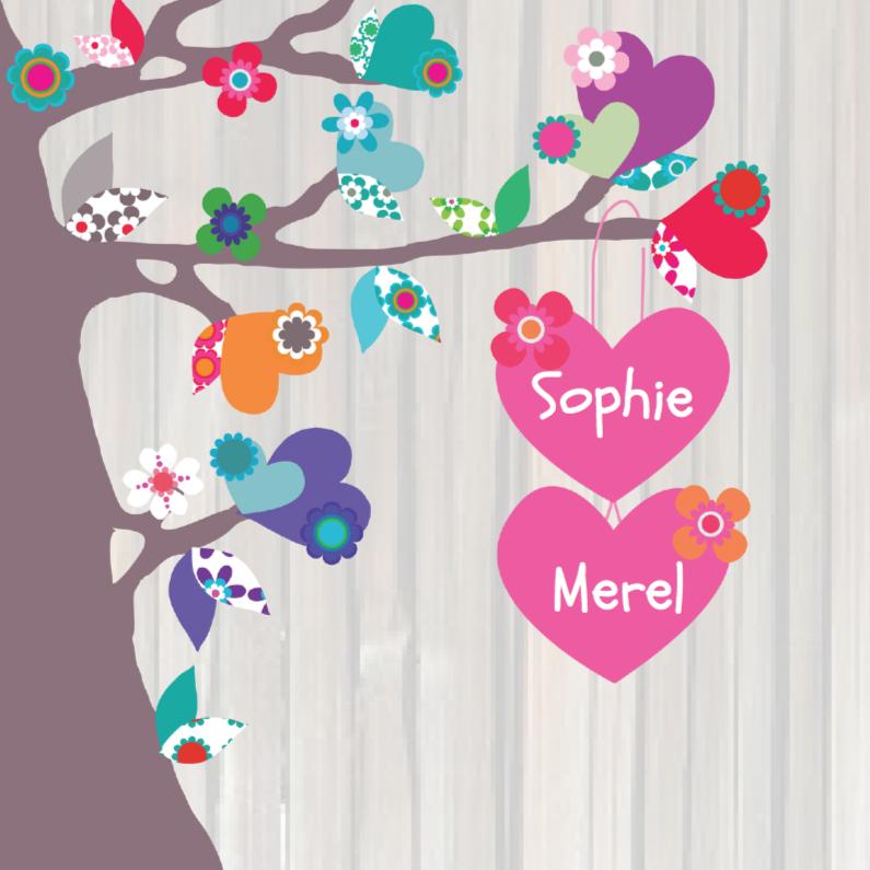 Geboortekaartjes - Geboortekaartje Tweeling Hart MS