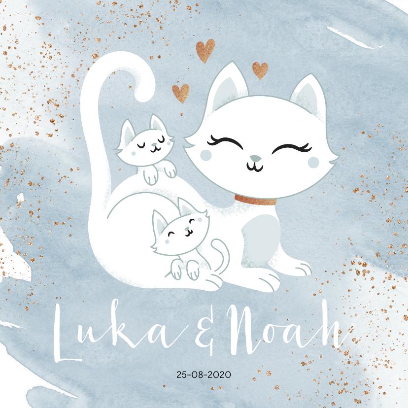 Geboortekaartjes - Geboortekaartje tweeling jongens poesje kat kitten waterverf