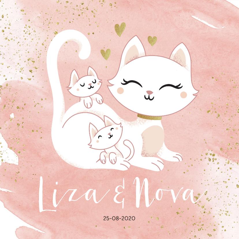 Geboortekaartjes - Geboortekaartje tweeling meisjes poesje kat kitten waterverf
