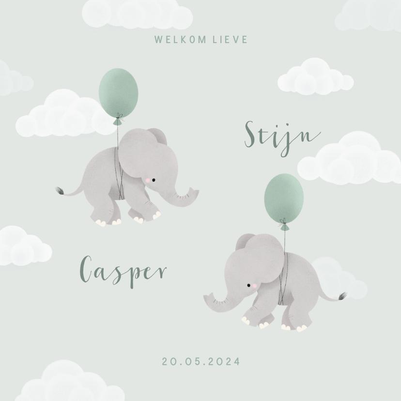 Geboortekaartjes - Geboortekaartje tweeling met olifantjes en ballonnen