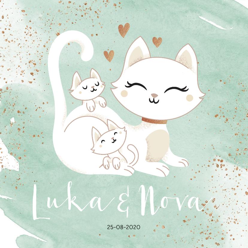 Geboortekaartjes - Geboortekaartje tweeling neutraal jongen meisje poes kittens