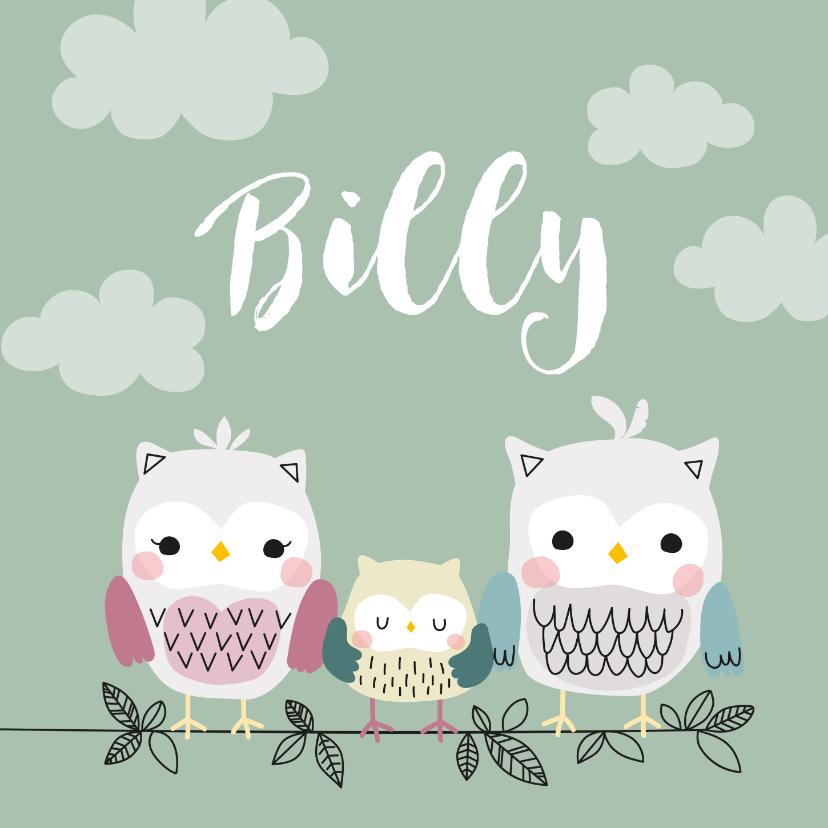 Geboortekaartjes - Geboortekaartje voor een jongen met uilenfamilie