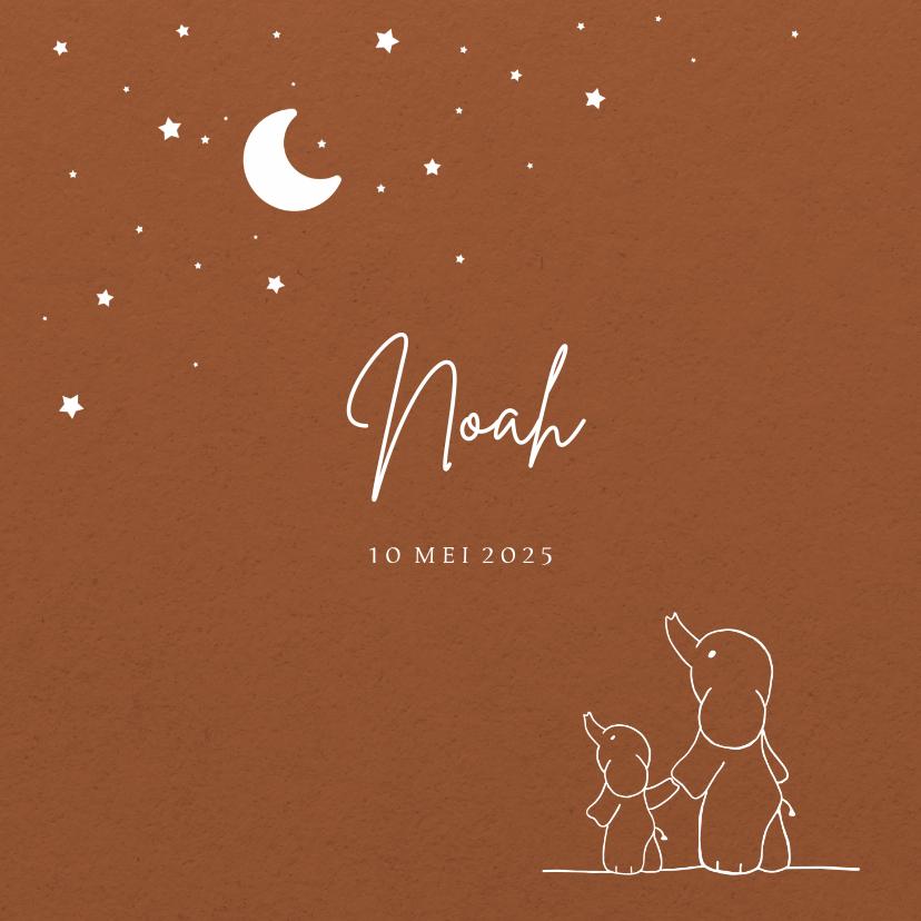 Geboortekaartjes - Geboortekaartje voor jongens met olifantjes en sterrenhemel