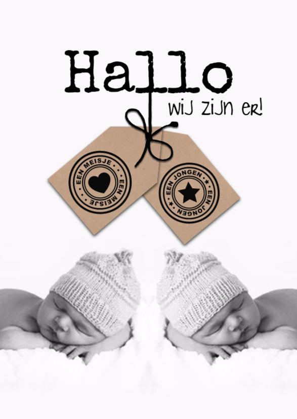 Geboortekaartjes - Geboortekaartje voor tweeling met labels