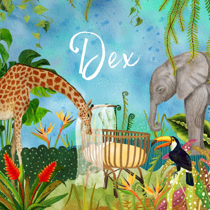 Geboortekaartjes - Geboortekaartje wiegje in de jungle tussen de dieren