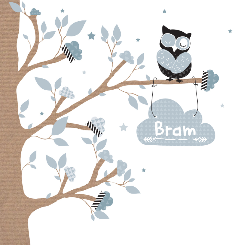 Geboortekaartjes - Geboortekaartje wolkjes uil Bram