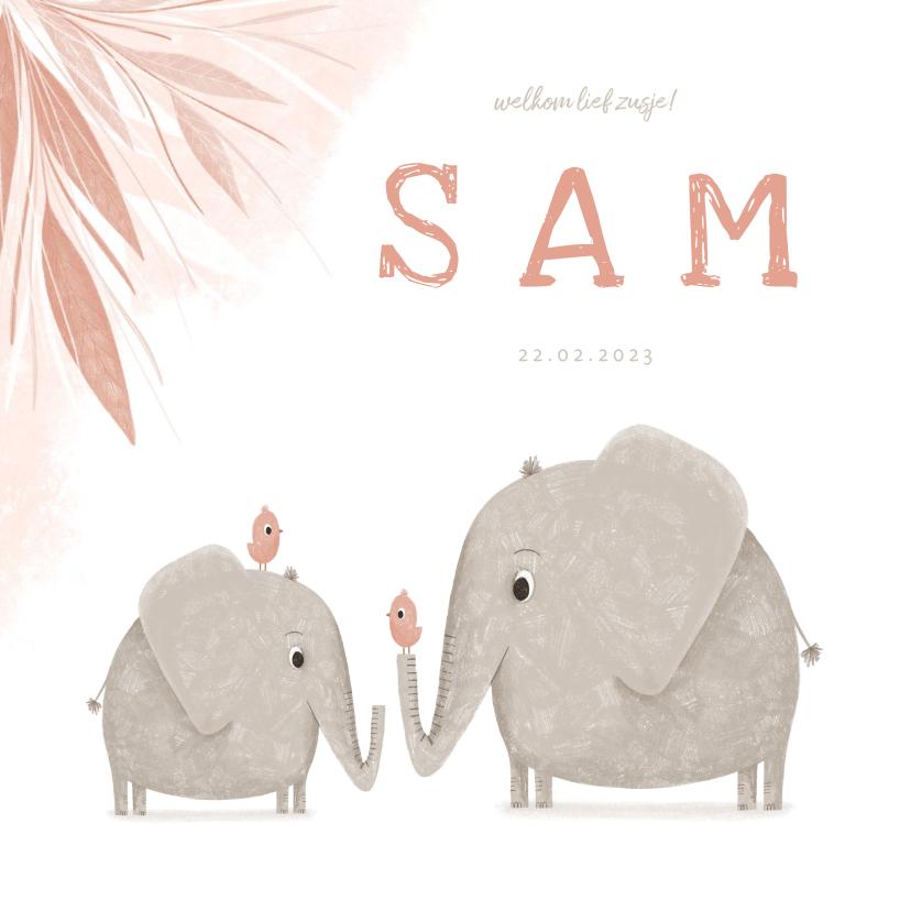 Geboortekaartjes - Geboortekaartje zusje met olifantjes en vogels