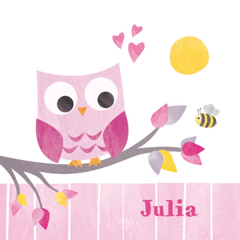 Geboortekaartjes - Geboortje meisje uiltje roze