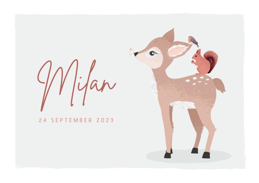 Geboortekaartjes - Grijsgroen geboortekaartje met getekend rendier en eekhoorn